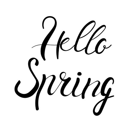Hello spring lettering isolated on white hand written vector type. Calligraphy