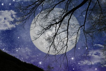 moon shadow: Magic night view