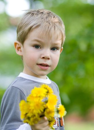 Little kid with bunch of dandelions photo