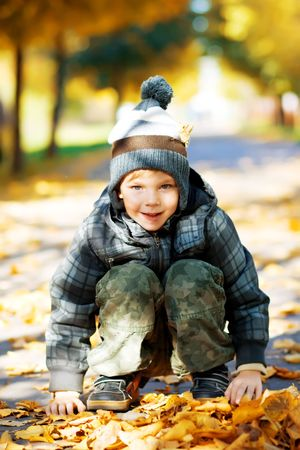 Beautiful little boy play on autumn park photo