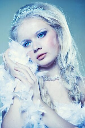 ice queen: Portrait of beautiful girl with winter makeup