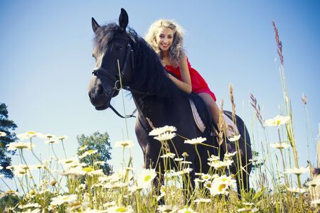 girl on horse: Beautiful girl on black horse at summer field