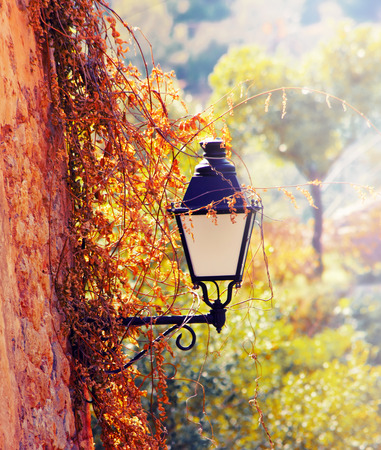 Street lantern with flowers, Deia, Mallorca, Balearic island, Spain photo