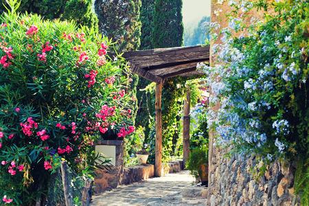 Beautiful garden in courtyard, Deia, Mallorca, Spain