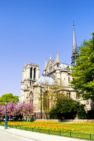 dame: Cathedral Notre Dame in Paris, France