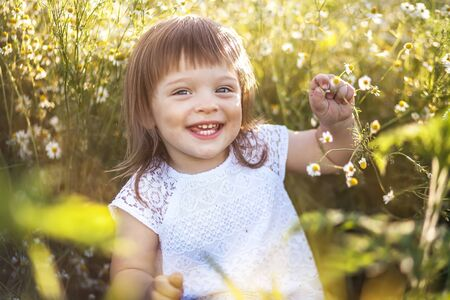 Beautiful little girl in chamomile summer meadow