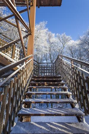atracci�n: Atracci�n tur�stica - Torre - invierno