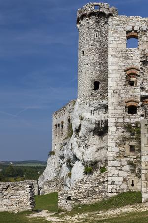 ogrodzieniec: Ruins of the castle Ogrodzieniec - Poland