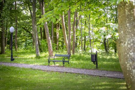 Empty bench in a green park Banco de Imagens