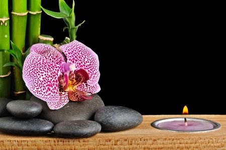 spa concept with orchid and stones  photo