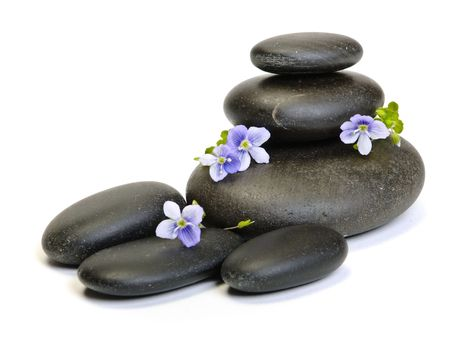 Zen stones and plant on the white background photo
