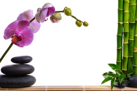 Pink orhid and stones on the white background Stock Photo - 7195966