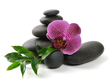 balancing: Pink orchid and stones on the white background Stock Photo
