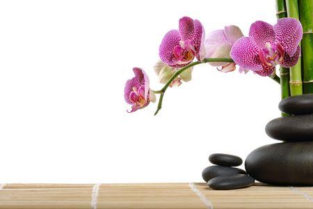 orchids: Orchidea rosa e pietre sullo sfondo bianco