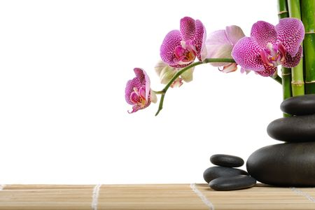 Pink orchid and stones on the white background photo