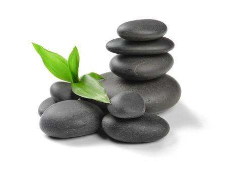 zen stones: Piedras de Zen y planta sobre el fondo blanco