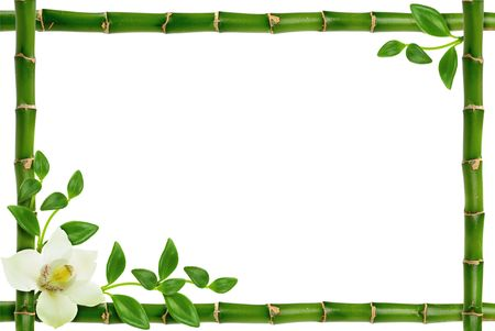 bamboo leaves: spa frame on the white background Stock Photo