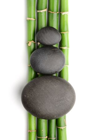 Bamboo grove and zen stones on the white background photo