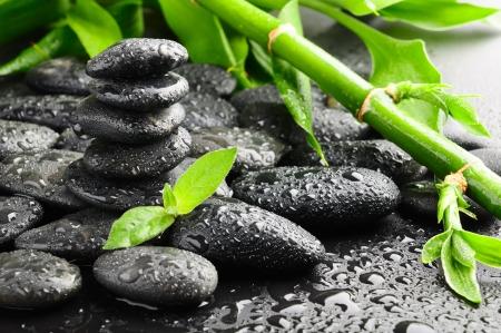 steine im wasser: schwarz Zen Steine und Pflanzen in Wasser