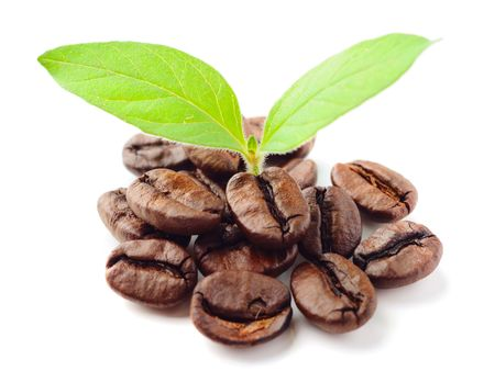 green bean:  coffee beans and leaf on the white background
