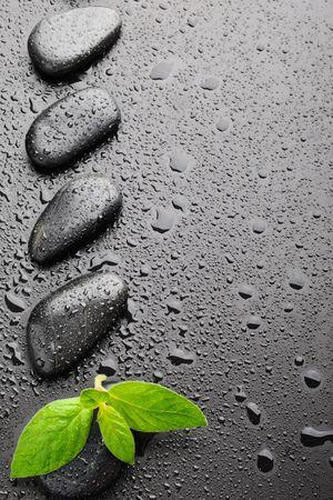 piedras zen: piedras de zen en negro y los vegetales en el agua