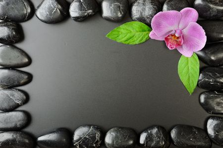 Pink orchid and zen stones on the black background photo