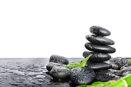 balancing: black stones and green plant with drops