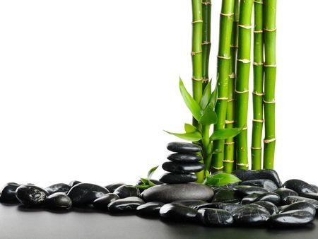piedras zen: Piedras Negras y planta verde con gotas