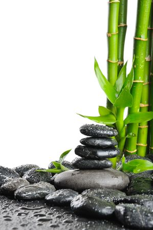 stack stones: black stones and green plant with drops