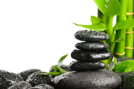 stack rock: black stones and green plant with drops