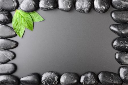 frame made from black stone and plant photo