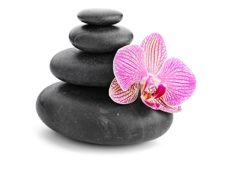zen stones and pink orchid isolated on white photo