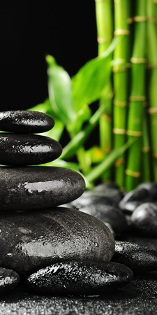 zen stones and green bamboo in the water Stock Photo - 8786513