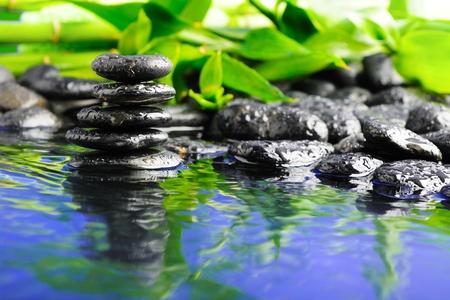 steine im wasser: Zen Steine und gr�ner Bambus im Wasser