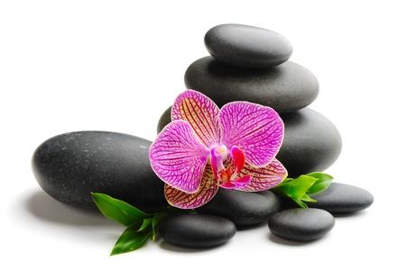 zen steine: Zen Stones und isolated on White orchid