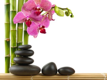 piedras zen: Orqu�dea y piedras de zen spa concepto Foto de archivo