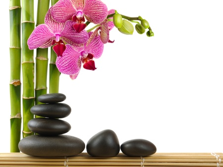 zen spa: spa concept zen stones and  orchid
