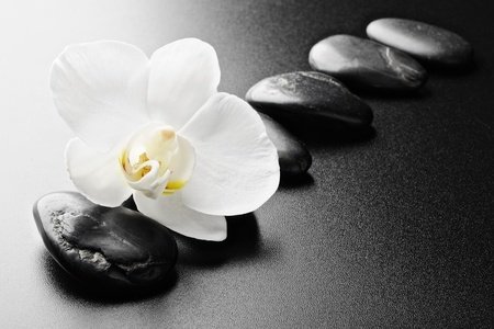 zen steine: Zen Steine und Orchideen auf dem schwarz Lizenzfreie Bilder