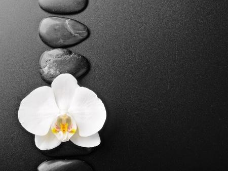 zen steine: Zen-Steine und Orchideen auf dem schwarz
