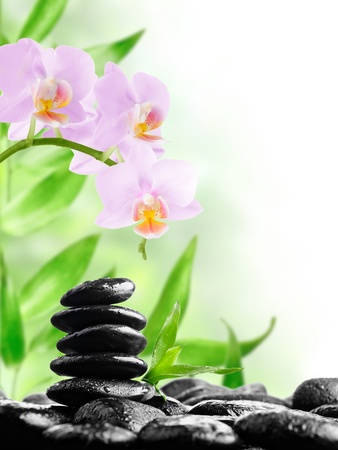 bamboo mat: zen basalt stones and orchid with dew Stock Photo