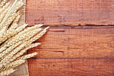 wheat crop: trigo y taza en el fondo de madera Foto de archivo