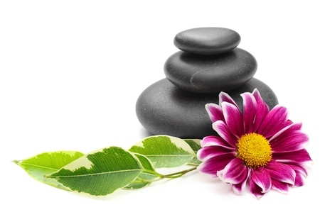 massage symbol: spa concept with zen stones and  daisy