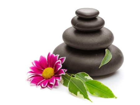 spa concept with zen stones and  daisy photo