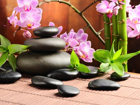 spa concept with zen stones and  orchid Stock Photo - 9989968