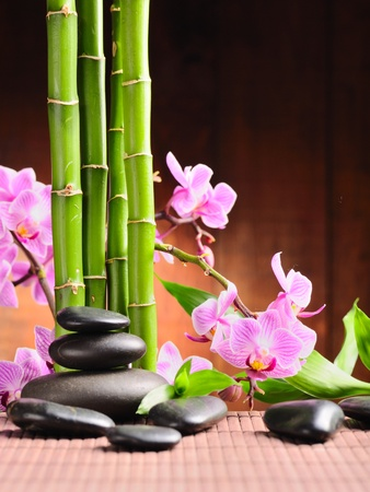 spa concept with zen stones and  orchid photo