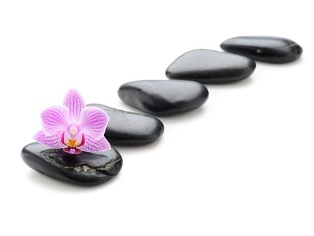piedras zen: concepto de spa con piedras zen y flor Foto de archivo