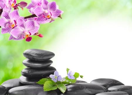 armonia: concepto de spa con piedras zen y flor Foto de archivo