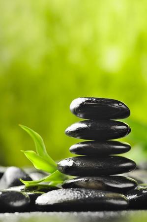 zen basalt stones and bamboo with dew photo