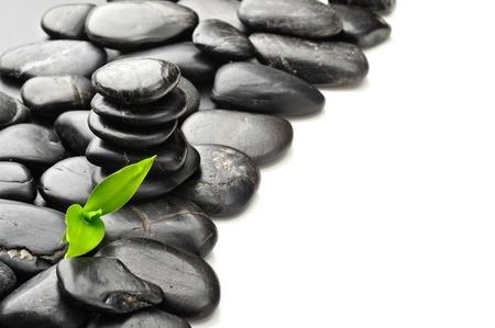 spa stone: Zen Basaltsteinen und Bl�tter Lizenzfreie Bilder
