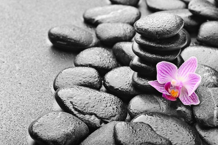 massage symbol: zen stones and pink orchid in the water Stock Photo